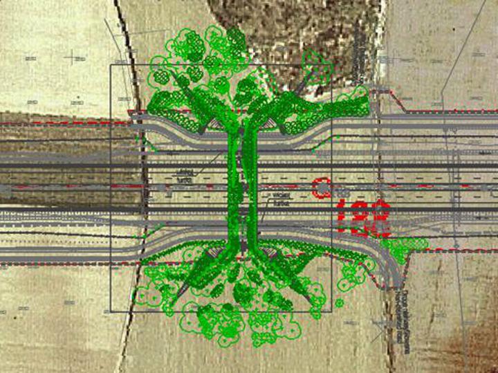 Zagospodarowanie przestrzenne przejścia dla dużych zwierząt nad autostradą płatną A-2