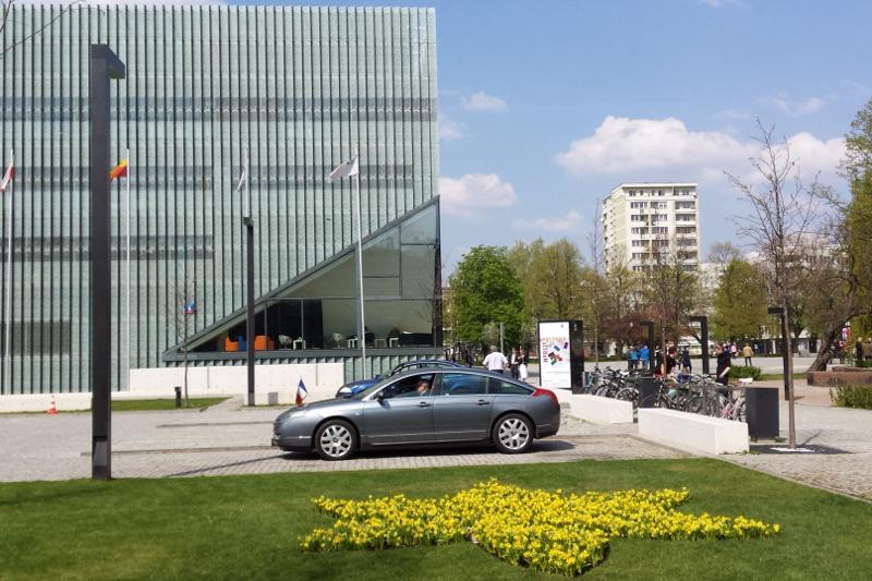 Żonkilowa rabata przy  Muzeum Historii Żydów Polskich z okazji 71 rocznicy Powstania w Getcie Warszawskim