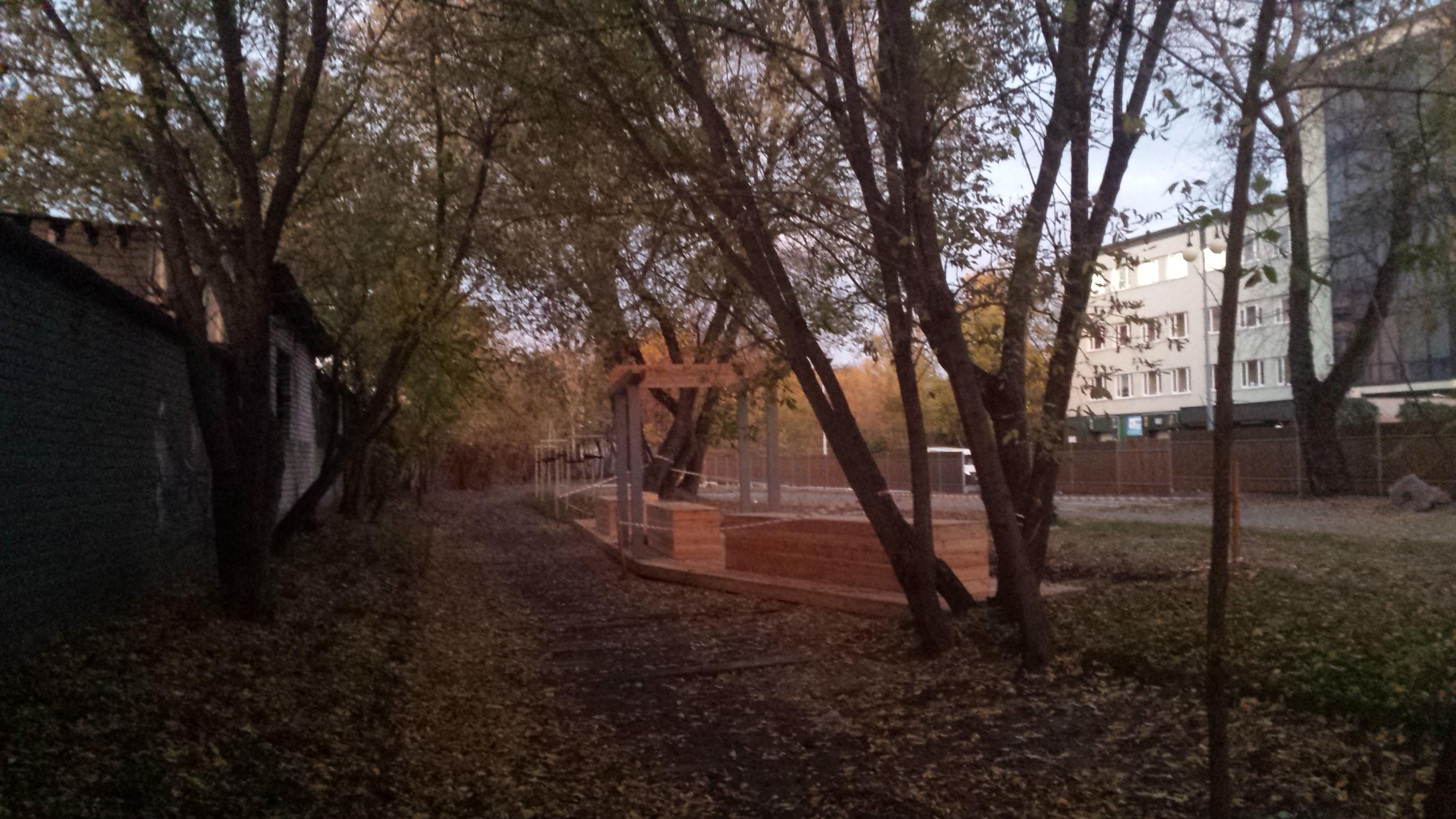 Zagospodarowanie Zieleńca Linearnego śladem dawnej bocznicy kolejowej
